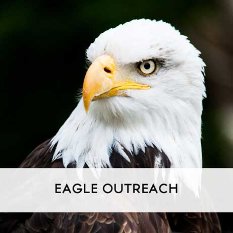 Eagle Outreach